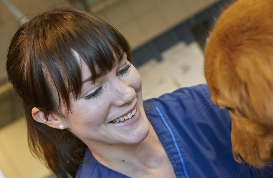 djurvårdare med ljusbrun hund
